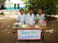 Semana de la ciencia (2012)