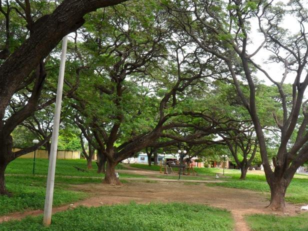 Parque de los Algarrobillos - Valledupar