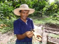 Horticultor Reserva Tananeos