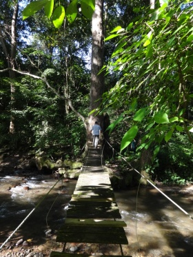 Puente peatonal río Manaure