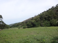 Paisaje Manaure