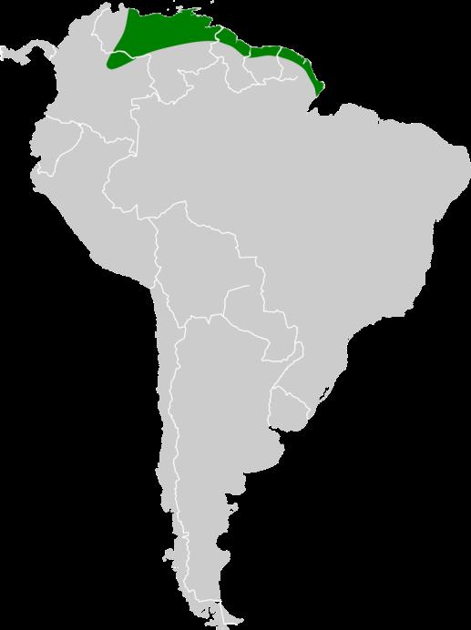 Zona originaria del ave. Ilustración: Wikipedia.Org