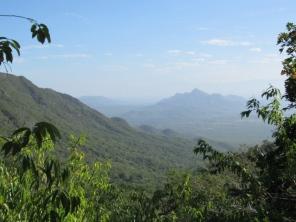 Paisaje de bosque seco tropical (Ecoparque Los Besotes) - Foto: Jose Luis Ropero.