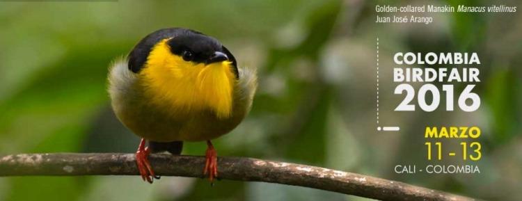 Colombia BirdFair 2016