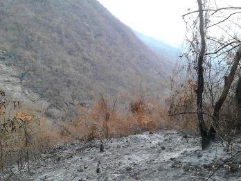 Los Besotes incendio 6