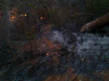 Los Besotes incendio 9