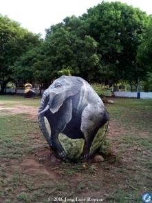 El elefante africano.