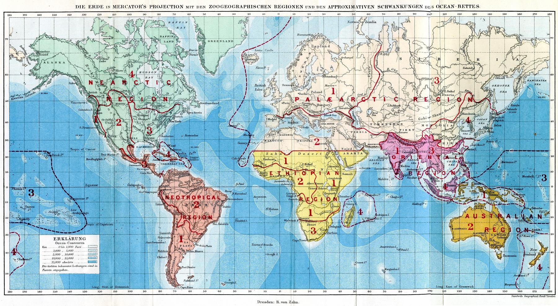 Regiones biogeográficas del mundo, Alfred Wallace.