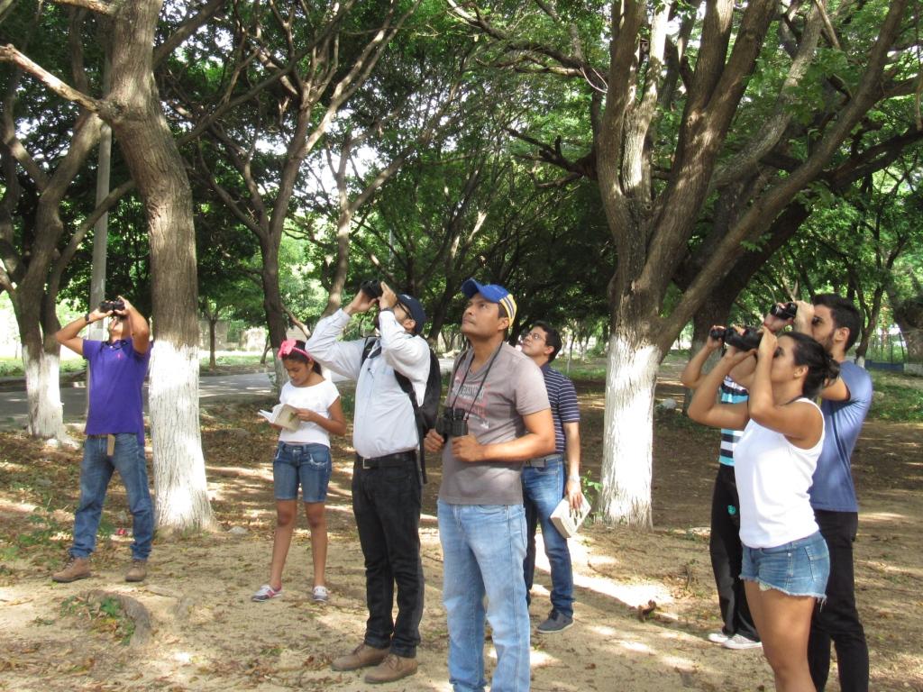 Grupo de ocho personas en un parque utilizando binoculares