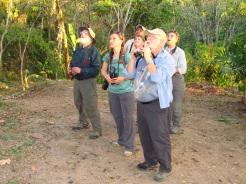 Birding Tananeos IMG_4413