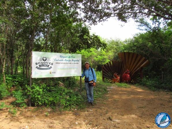 El Director, en el sector de Los Bosques de Paz, Ecoparque Los Besotes.