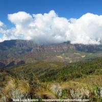 Birding tour en el Perijá con Cali Tours / Birding Colombia