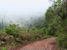 Camino El Cinco Manaure CesarIMG_6346