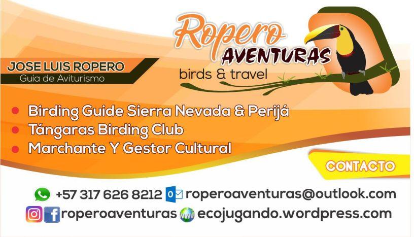 Birding Guide Colombia