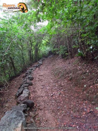 Paseo EcoParque LosBesotes124 Ropero