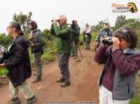 Momento con el Perijá Thistletail (Metallura iracunda).
