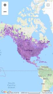 Red-tailed Hawk distribution.png