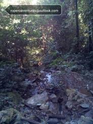 sendero de montaña