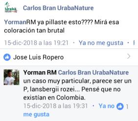 opiniones Ropero Aventuras.png