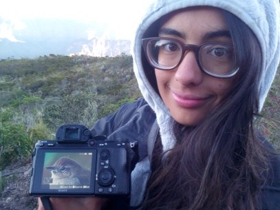 Excelentes vistas y fotografías nos regalaron las aves de Manaure, aquí Camila con la foto que le tomó al Perijá Thistletail, en Sabana Rubia.