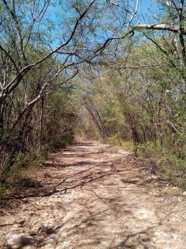 Parte baja, Ecoparque Los Besotes.