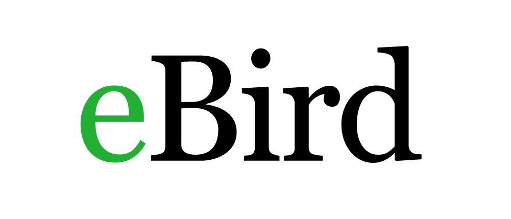 Logo ebird