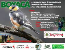 Global Big Day Boyaca