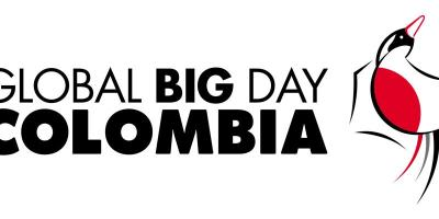 emblema global big day colombia