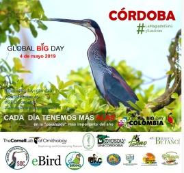 Global Big Day Cordoba 2