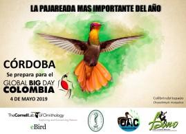 Global Big Day Cordoba