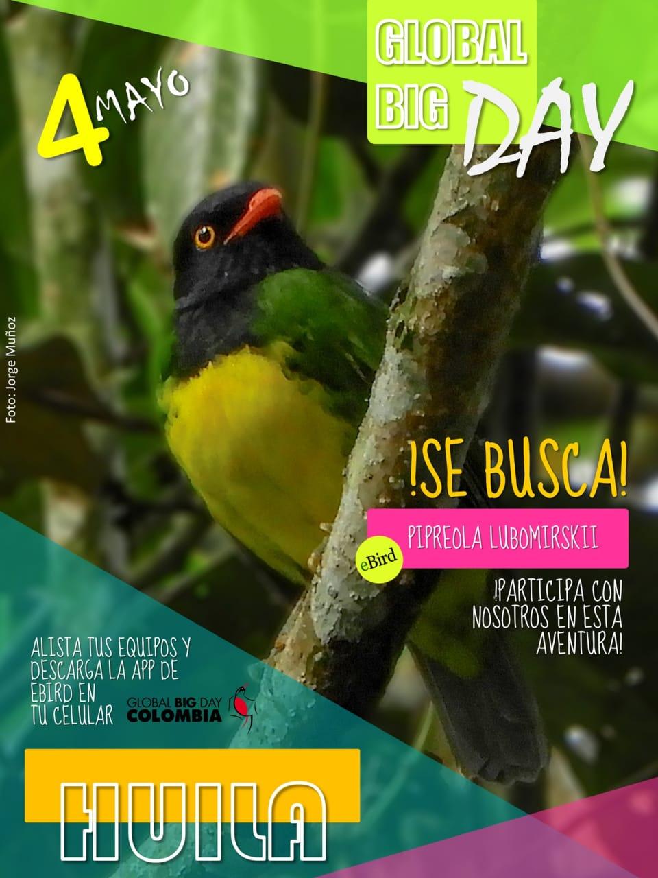 Invitacion global big day huila