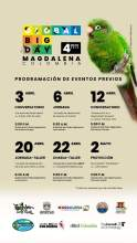 Invitacion global big day magdalena