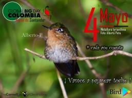 Global Big Day Norte Santander