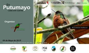 invitacion global big day putumayo