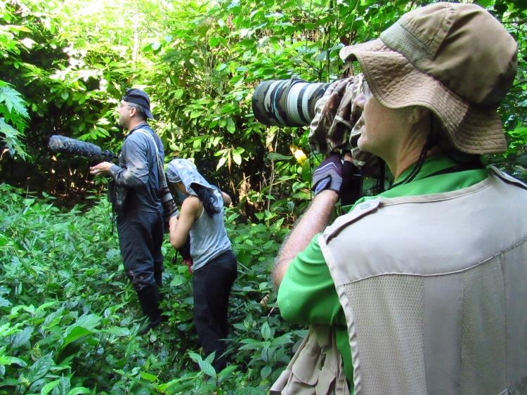 Andres Cuervo Ornitologo colombiano