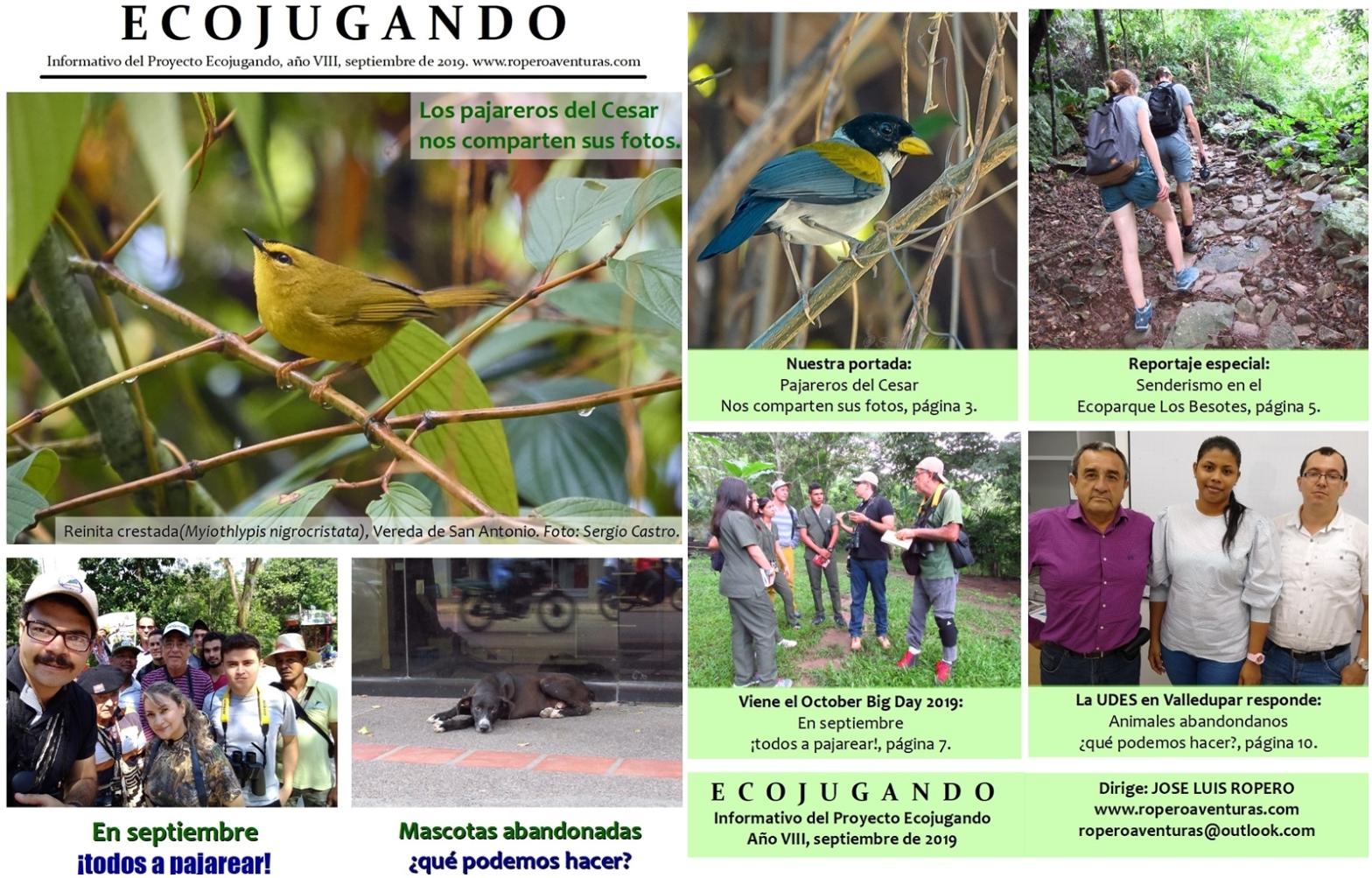 Portada Revista Ecojugando septiembre 2019
