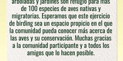 Informacion sobre avistamiento de aves en Valledupar