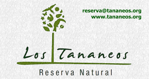 Logotipo de colores blanco verde marron