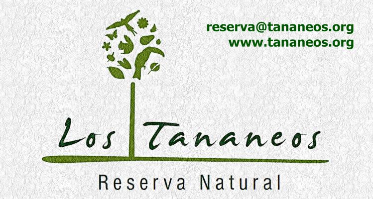 Logotipo de colores blanco verde marron