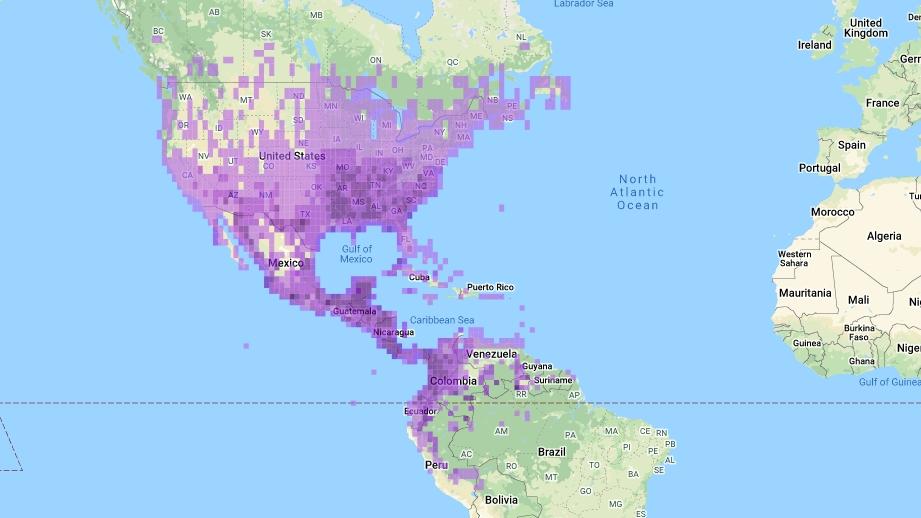 Mapa de distribucion de una especie de ave