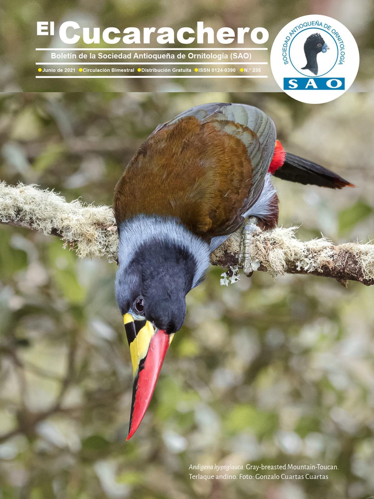 Portada de una revista que muestra un tucan terlaque andino